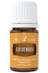 Goldenrodessential oil